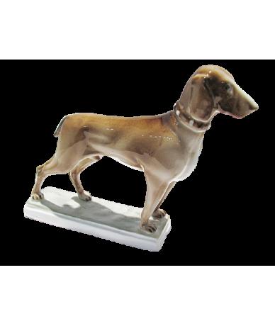 Zsolnay vizsla kutya